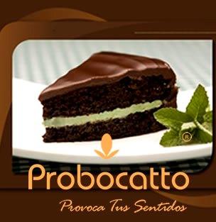 Probocatto - Chía